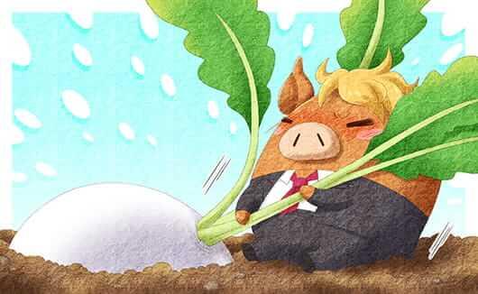副業で農業を始めるには?収入を得るための農業への取り組み方